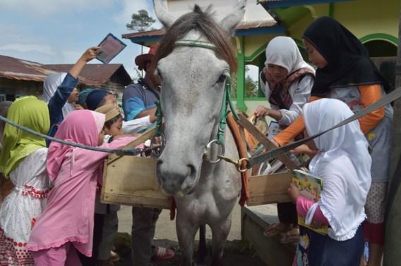 """<p>De kinderen en volwassenen uit Serang zijn dolblij als de paardenbibliotheek voorbijkomt. Vers leesvoer!<span class=""""credit"""">afp</span></p>"""
