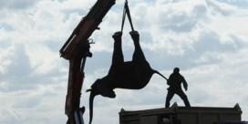 IN BEELD. Vijfhonderd olifanten krijgen nieuwe thuis