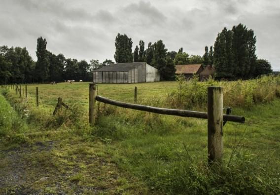 Op de lap grond van 3,5 hectare staan vandaag een boerderij en een manege. Die zouden moeten wijken voor een villawijk.