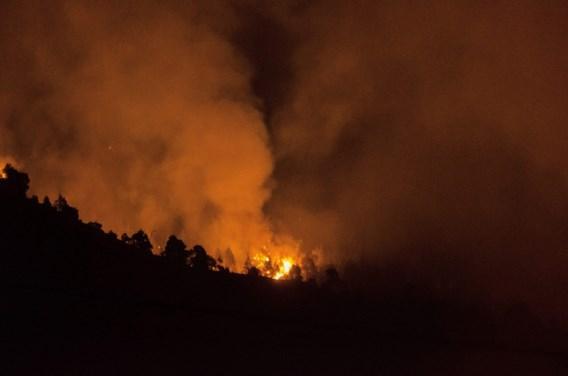 Duitser veroorzaakt hevige bosbrand op La Palma