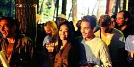 IN BEELD: Reggae Geel by night: allerlei lichtjes