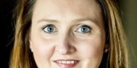 'N-VA is bijzonder bedreven in het creëren van onbestaande problemen'
