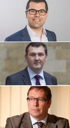 Sander Loones (Europa), Karl Vanlouwe (Vlaams) en Peter Luykx (federaal) richten een werkgroep op.