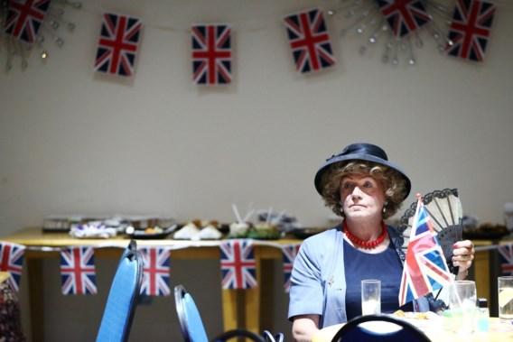 Britten willen op maat gemaakte oplossing voor uittrede uit EU