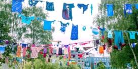 20 acts die je absoluut moet gezien hebben op Laundry Day