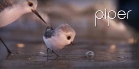 VIDEO. Weer pareltje van Pixar integraal online