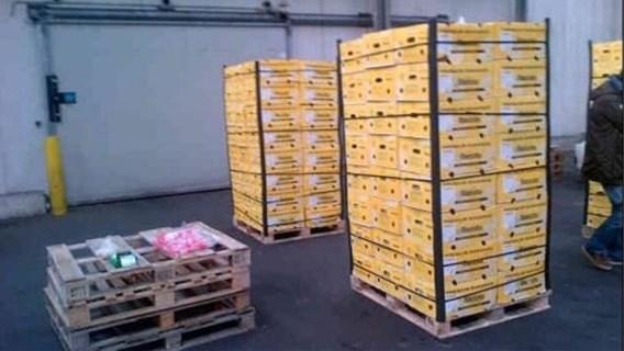 Nederlandse voedselbank krijgt bananen met extra cocaïne