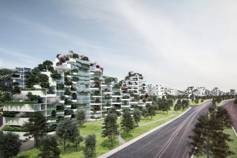China wil luchtvervuiling aanpakken met 'bossteden'