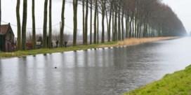 Bomenrij langs Damse Vaart is monument
