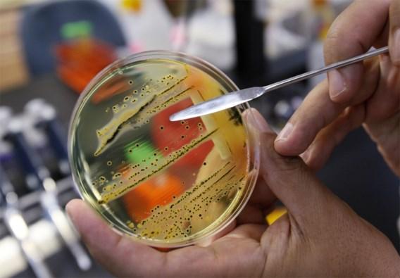 WHO voert strijd tegen antibiotica-resistente bacteriën op