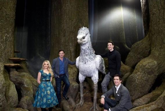 Harry Potter Studio's geven inkijk in Verboden Bos