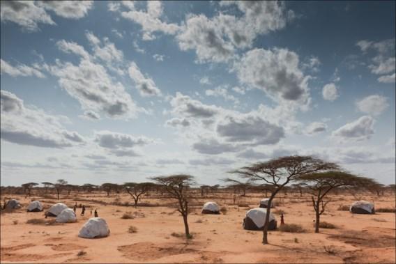 Kleine lichtpuntjes in hongerend Afrika