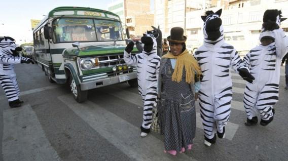 Hoe een paar zebra's de stad veiliger maken