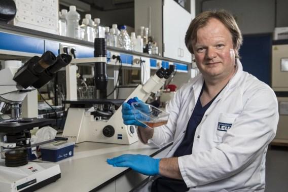 Leuvense topdokter knoeide met kankerstudies