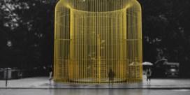 Ai Wei Wei trekt grenzen op in Manhattan
