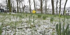 Zondag kans op sneeuw