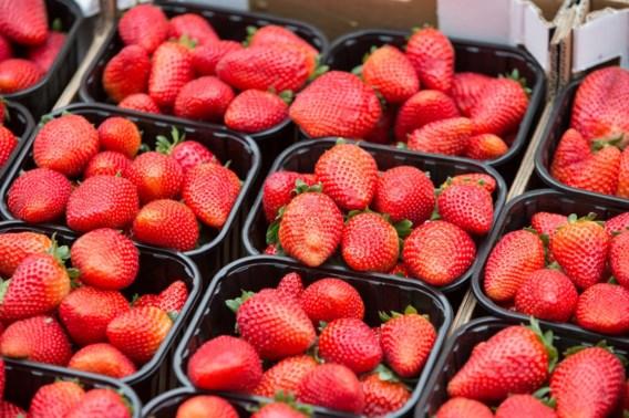 Belgische aardbeien fors goedkoper