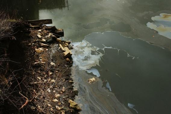 Milieu in de VS grootste slachtoffer van Trump