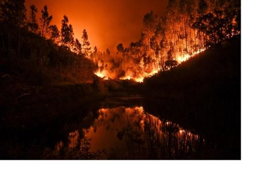 De klimaatverandering brengt moordende bosbranden met zich mee