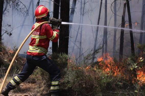 'Gebied drie keer zo groot als Lissabon afgebrand'