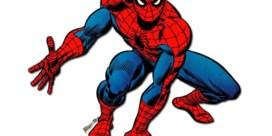 De spectaculaire Spider-Fan