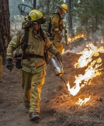 Bosbranden op Sicilië: honderden toeristen geëvacueerd
