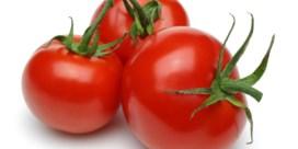 Zoete tomaten kweek je met zout water