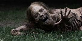Stuntman verongelukt op set van 'The Walking Dead'
