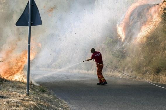 Ook Italië en Balkan geteisterd door bosbranden