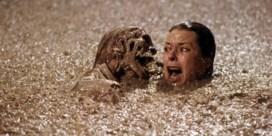"""Crewlid maakt einde aan discussie: 'Spielberg regisseerde """"Poltergeist""""'"""