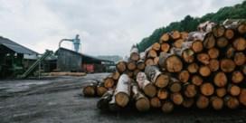 Labels duurzaam hout schieten doel voorbij