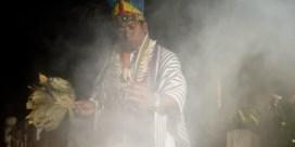 Pijn en trauma helen met rituele drugs uit de Andes?
