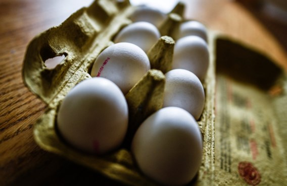 Aldi verkoopt opnieuw eieren in Duitse winkels