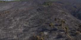 Dronebeelden tonen enorme ravage na Griekse bosbranden