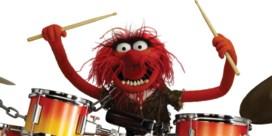 Waarom de drummer het altijd gedaan heeft