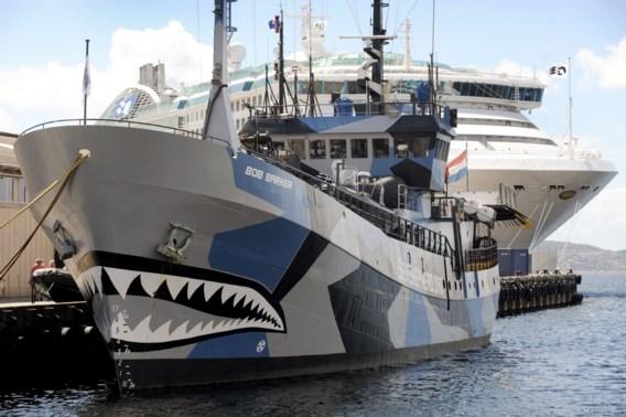 Sea Shepherd verliest walvisstrijd tegen Japan