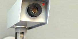 Waar blijven verplichte camera's op de slachtvloer?