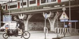 De snelste bakfietsers van 'Gent