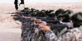 Verbod op IS-propaganda belandt in prullenmand