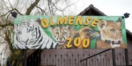 Olmense Zoo moet dicht