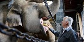 Is de dierentuin met uitsterven bedreigd?