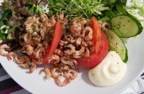 Tomaat-garnaal wordt opnieuw betaalbaar