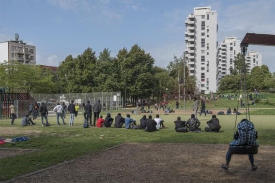 Tiental migranten zondagavond opgepakt bij actie in Maximiliaanpark