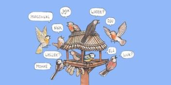 Hoe perfect is uw dialect?