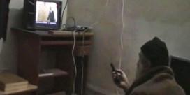 Osama bin Laden hield van teken- en natuurfilms