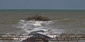 Voor 2,35miljoen euro kunst aan onze kust komende zomer