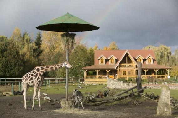 Inspectie haalde dieren weg bij nieuwe voorzitter van Olmense Zoo