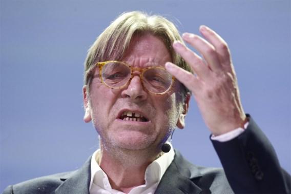 PVDA: 'Link Verhofstadt met Paradise Papers'