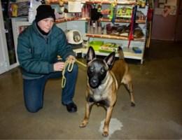 Verslag hondentherapeut Uscko positief