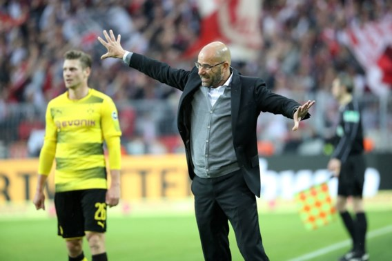 "Dortmund-preses geeft toe: ""Aanstelling Peter Bosz was fout"""
